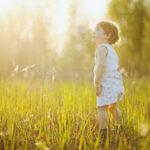 Le sens de l'éducation: Eduquer pour éveiller les consciences